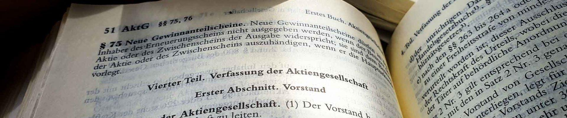 Organe einer Aktiengesellschaft Ilja-Schlak.de